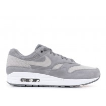 Air Max 1 Cool Gris Wolf Gris - 875844-005