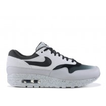 Air Max 1 Gradient Toe Pure Platinum - 875844-003