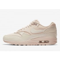 Nike Air Max 1 Guava Ice 917691-801