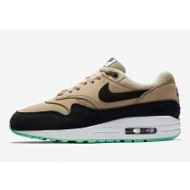 Nike Air Max 1 Mint Verdes Sole 319986-206