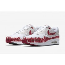 Nike Air Max 1 Tinker Sketch To Shelf CJ4286-101