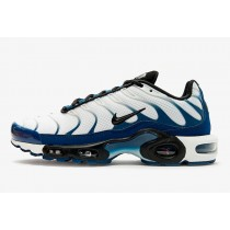 Nike Air Max Plus Azules Force CD7061-100