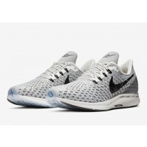 Nike Air Zoom Pegasus 35 AT9977-101